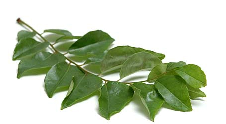 Curry Leaves (Karivepaaku)