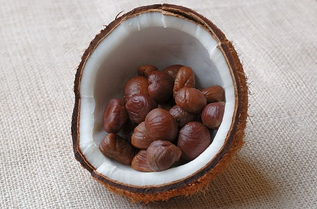 Chestnuts and Coconut
