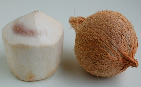 Coconut - Young and Mature