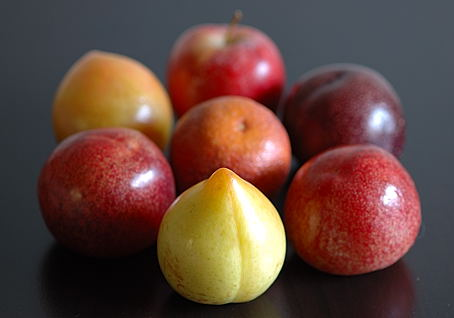 Assortment of Stone Fruits