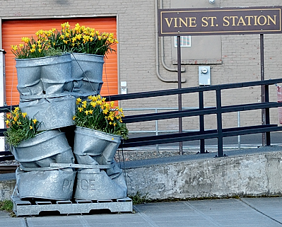 Vine street, Seattle