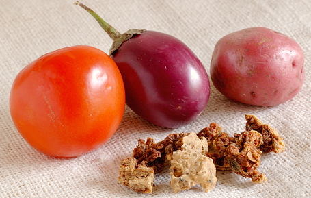 Tomato, Purple Brinjal and Red Potato with Broken Pieces of Punjabi Wadi