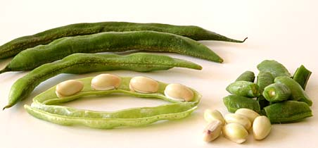 Indian Broad Beans, Chikkudu Kayalu