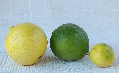 Sweet Lime (Mitha Nimboo, Limetta), Lime and Small Lime (Key Lime)